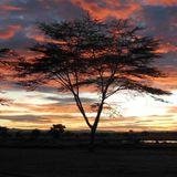 Summer in Kenya