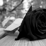 dj dots . . Black roses mix - Barrington Levy Vol.1