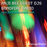 Chillcast Guest DJ for Tranquil Beats on Bondfire Radio (Part 2-5)