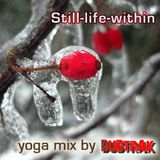 Still-Life-Within Yoga Mix