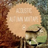 ACOUSTIC AUTUMN MIXTAPE 2014