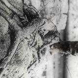 Manquante (Évaporation — Hanoï — carte cinquième et parallèle)