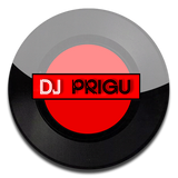 DJ Prigu - Ne place Skrillex (Crazy Mashup)