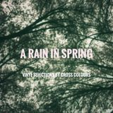 A Rain In Spring : vinyl selections by cross colours