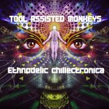 TOOL ASSISTED MONKEYS - Ethnodelic chillectronica