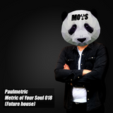 Metric of Your Soul - 018 (future house)