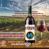Vi Magazine Especial de Vinos Mexicanos