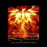 SEKSiCuLTURE #010_Like a Phoenix Rising