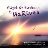 Flight Of Birds (mix8)