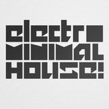 Electro Minimal House