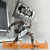 "Poolside Summer Sounds ""KiwiStyle"""
