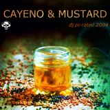 dj pi-rated - cayeno & mustard  (chillout session 2004)