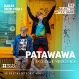 The Selector After Dark 1x13 with Patawawa