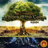 Napi Elemozsia Saturday Session 004 - Voices of the Celts