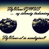 FlyWaveIZMUS #9