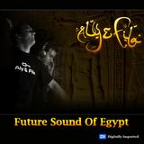 Aly & Fila - Future Sound Of Egypt 294 (24.06.2013)
