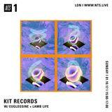 Kit Records w/ Euglossine & Lamb Life - 1st October 2017