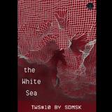 sdmsk - tWS podcast #10