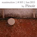 Reanimation - Mixtape #3 | mixed by Pinoir