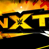 WWE NXT Review (1/28/15) - This is NXT - Episode 2