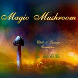 """"" MAGIC MUSHROOM """" chill & lounge compilation"