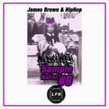 #8 James Brown and HipHop x Sample Nation x Maj Duckworth