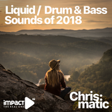 Liquid / Drum & Bass - The sound of 2018 (Part 2)
