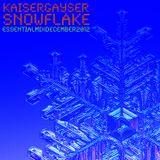 Kaiser Gayser 'Snowflake' Essential Mix