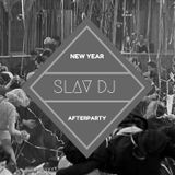 Slav DJ - New Year Afterpraty (01.01.2017)