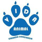 Vida Animal - ¿Qué es el bienestar animal?