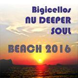 NU Deeper Soul II (Beach 2016)