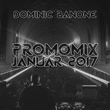 Dominic Banone - Promomix Januar 2017