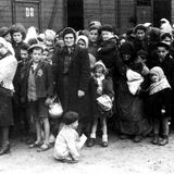 15. Displaced Persons