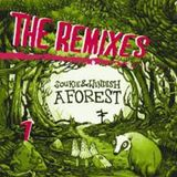 Soukie & Windish. A Forest remixes, mixed by eFonik