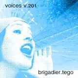 voices v.201