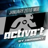 ACTIVA-T SESSION January 2016