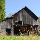 the Hard Core Barn Core   (ElectroBilly, GypsyStep, World, NuSwing, Balkan)
