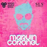 Live @ SLS, Miami, FL