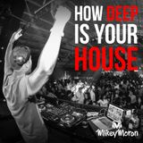 DJ Mikey's How Deep is Your House Mix