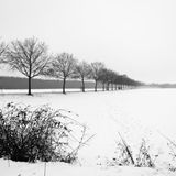 Winter Sadness / Rausch mixed by der Schue / January 2017