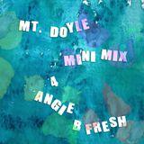Mt. Doyle - Minimix 4 Angie B Fresh