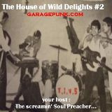 The House of Wild Delights #2