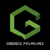 DJ Greenice Promomix 2014