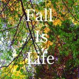 Fall 2016 - Fall Is Life Mix 001