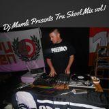 Tru Skool mix vol. 1 | DJ Mamli