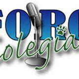 Banda Colegial Rumbo a Pasadena 2020 - 20190628