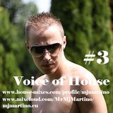 MJ MARTINO - Voice of House #3
