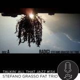 Stefano Grasso Fat Trio - Radici