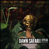 STYLSS Mix 005: DAWN SAFARI