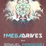 The Megadrives Live in Asheville, NC 4-17-2013